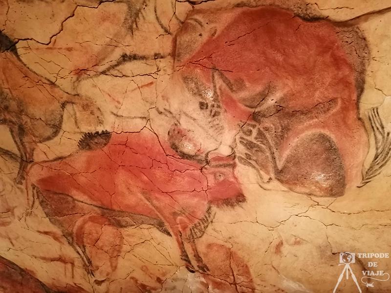 Representación de bisontes en la Cueva de Altamira.